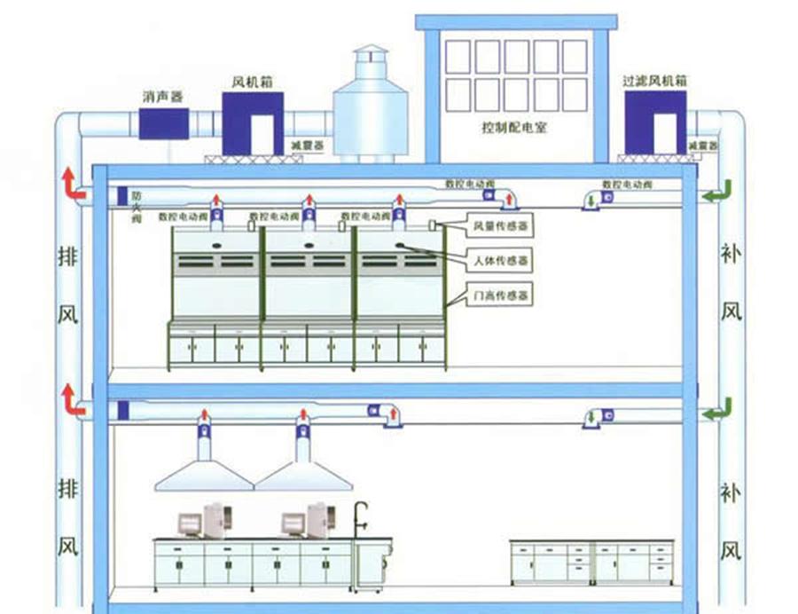物流部按功能划分组织结构图